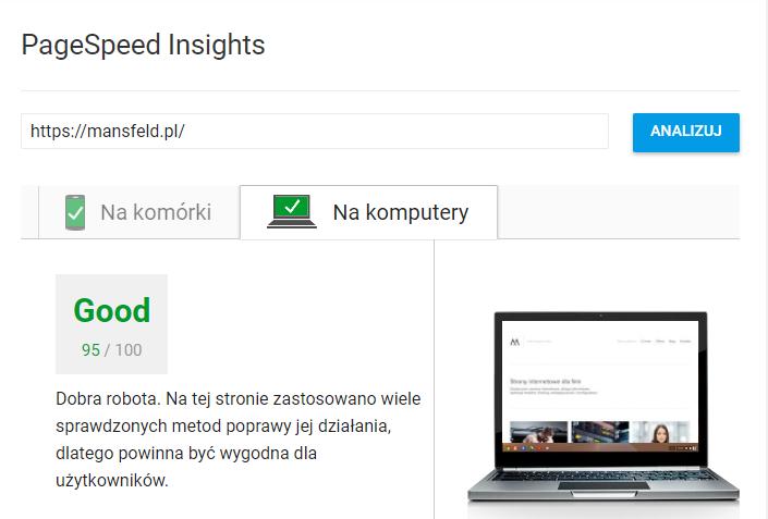 optymalizacja seo pagespeed insights