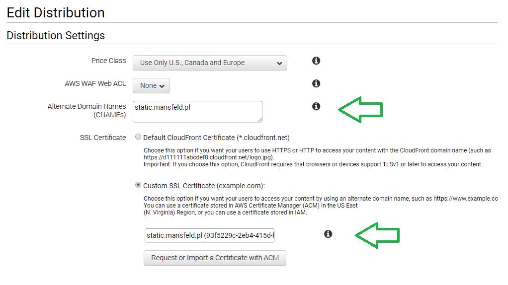 Konfiguracja alternatywnej domeny CloudFront