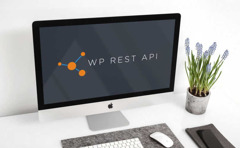 WordPress REST API – co to jest? (kurs od podstaw)